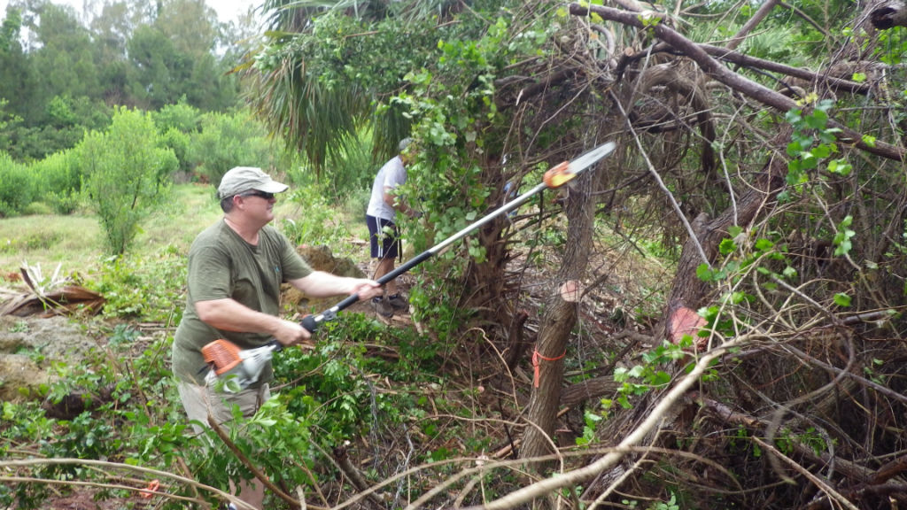Keith Rowley runs a pole saw.