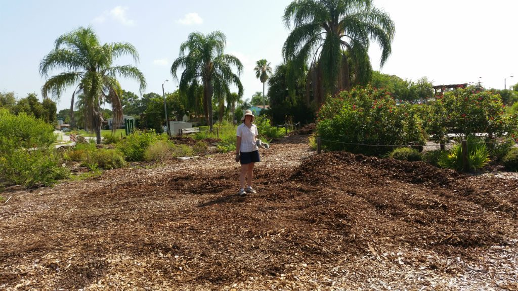 Volunteer Maura Qualls stands among the newly spread mulch in the Butterfly Habitat at Wildflower Preserve